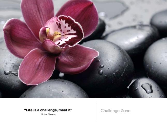 312 Challenge Yourself