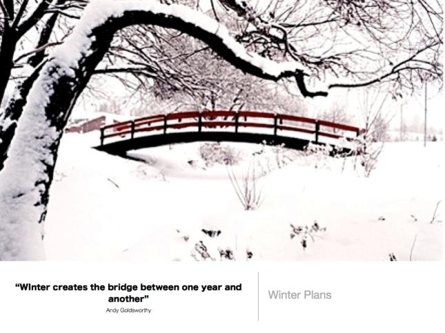 319 Winter Plans
