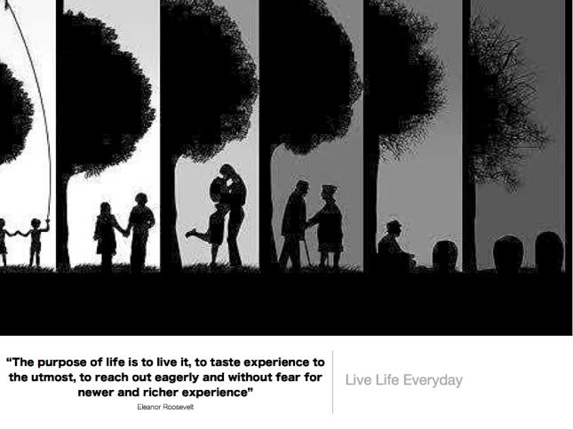 351 Live Life