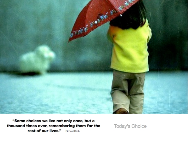 359 Todays Choice