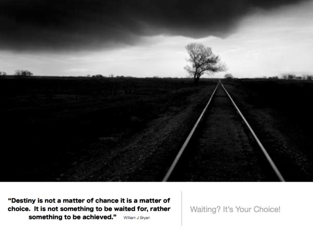 360 Conscious Choice