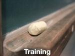 Training.623
